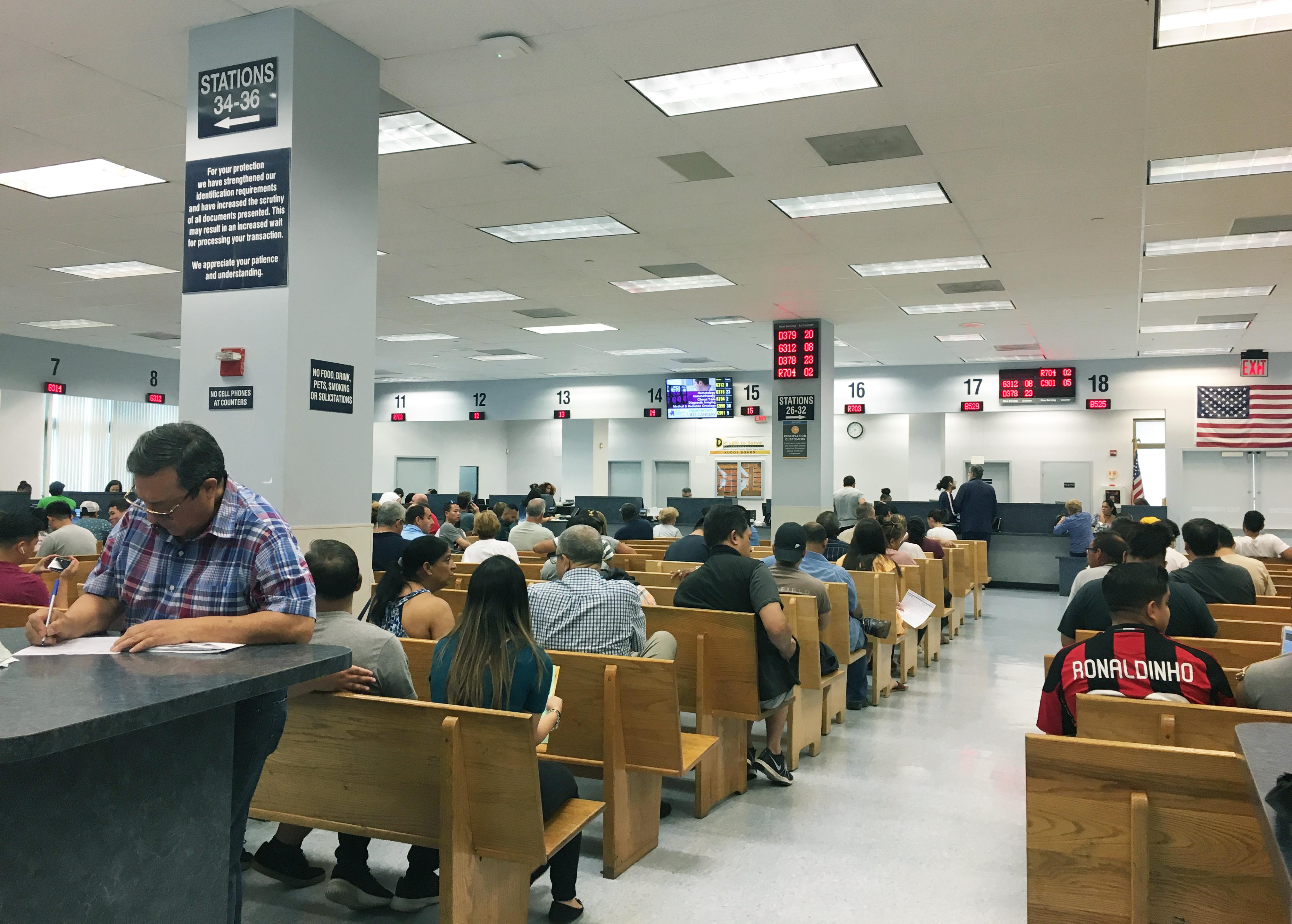 dmv, 紐約, 申請駕照, 文件, 開車